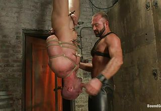 Bulky queer suspending upside down and getting his gullet porked